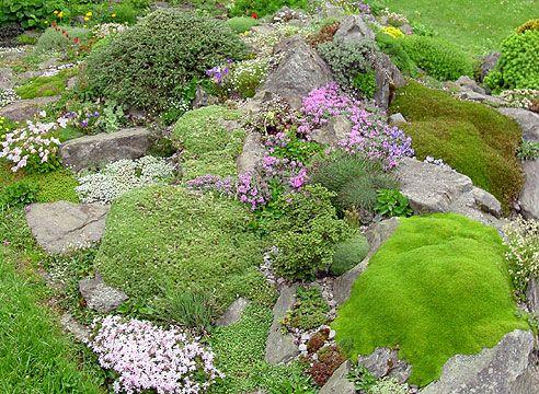 строительство альпийской горки в своем саду