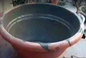 ваза1-5