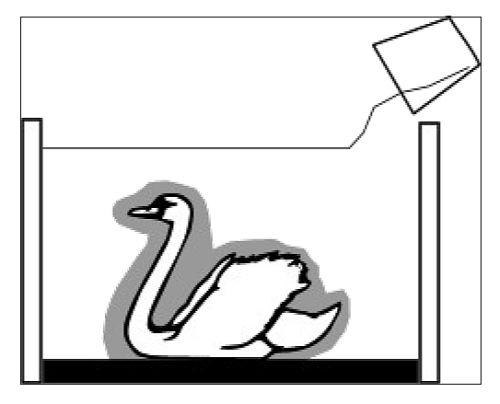 оболочковая форма 2