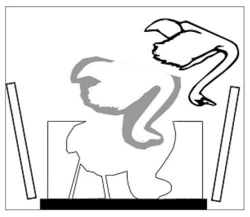 оболочковая форма 3