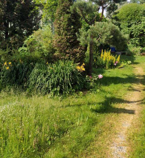 Простая садовая дорожка