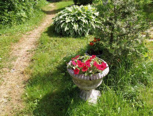 Обработанная садовая дорожка