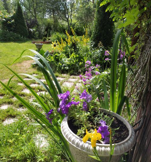 Простые садовые дорожки