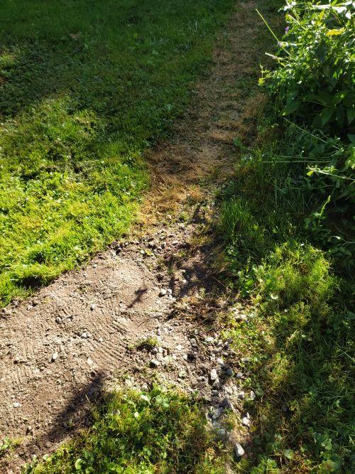 Садовая дорожка на грунте